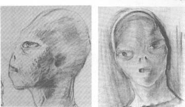 A picture of the alien