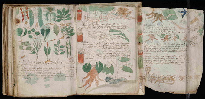 The Voynich Manuscript - 10 Unexplainable Mysteries From The Past