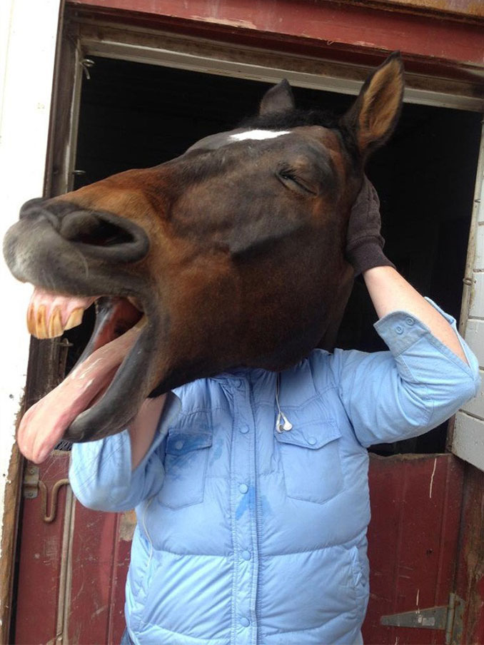 A photo of a man with a horse's head - 20 Funny Animal Photos You Have To See