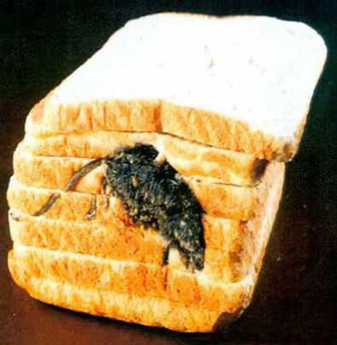 A mouse baked into bread - 20 WTF Photos You Just Have To See
