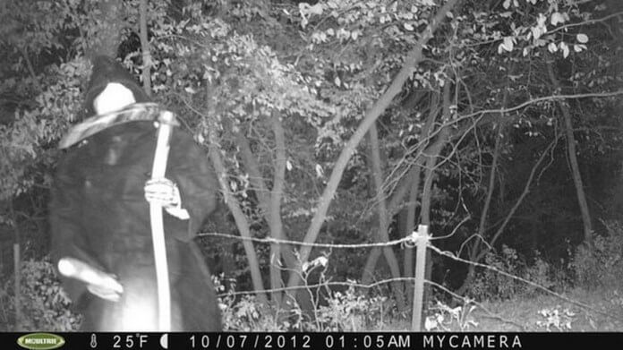 Creepy trail cam photos