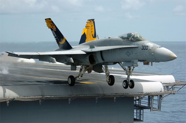 This F/A 18 Hornet was one of the most expensive eBay listings ever