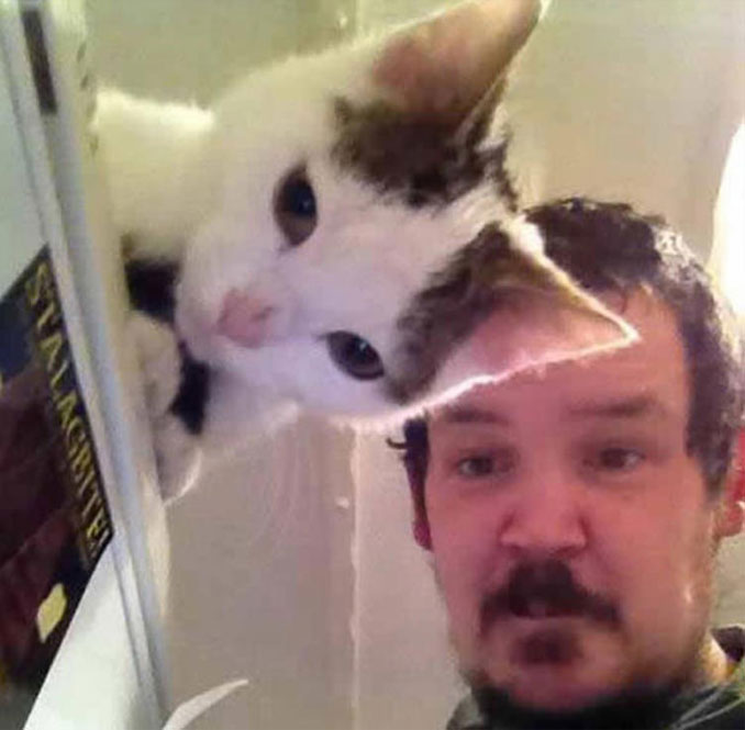 A photo of a cat that looks like its ear is part of the man's head.