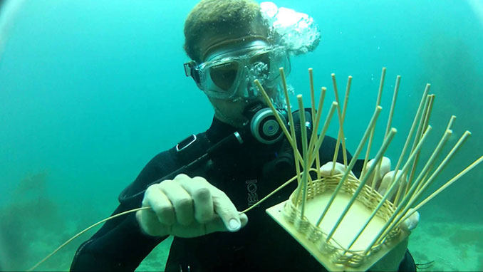 Reed College in Oregon offers a class in Underwater Basketweaving - 10 Strangest University Courses You Can Actually Take