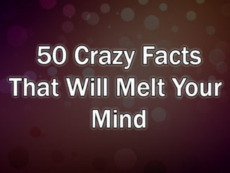 50 Crazy Facts That Will Melt Your Mind!