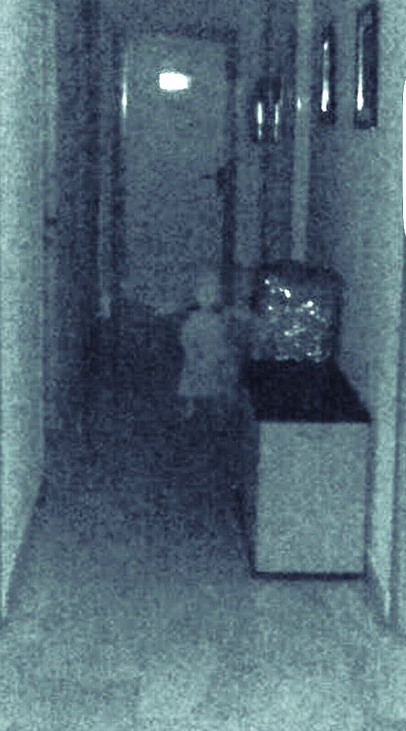 A photo of a ghost of a little girl taken at the town hall in Vegas del Genil, Spain.