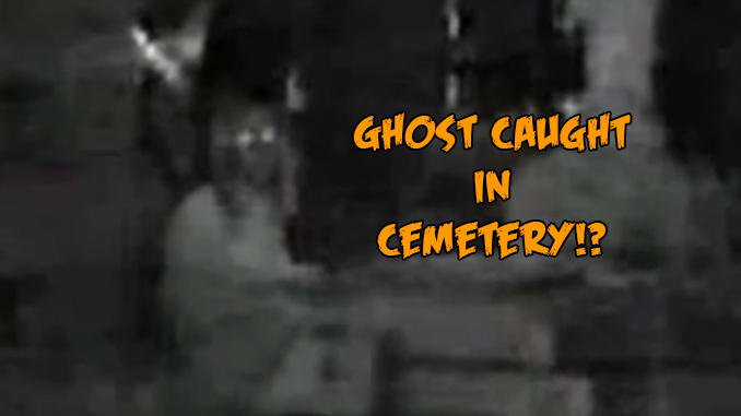 Scary Animals That Are Real Real Ghost Footage You...