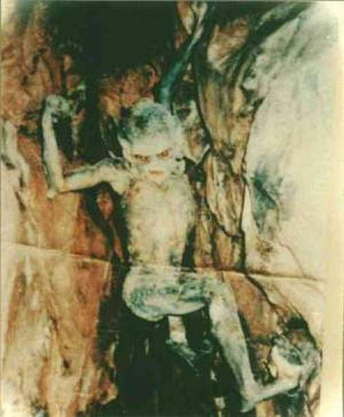 Real demon photos, this one was taken in a cave in the UAE