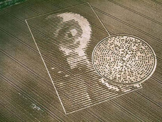 10 Crop Circles That Have Left Authorities Stunned