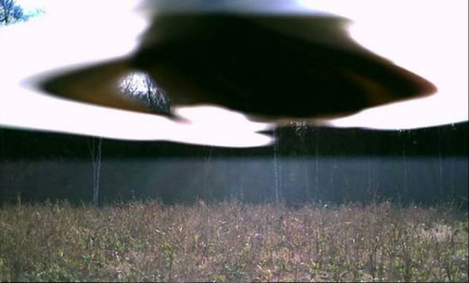 Strange UFO photographed on trail cam - 10 Strangest Things Ever Found in the Woods