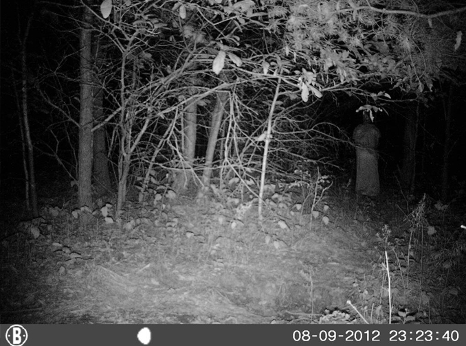 Robed monk caught on trail camera - 10 Trail Camera Photos That Cannot Be Explained