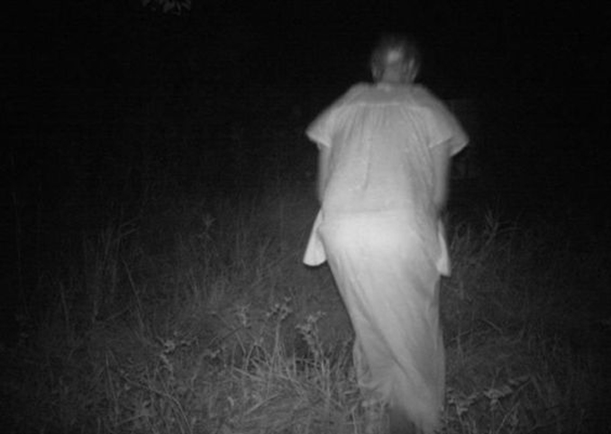 Robed figure caught on trail camera - 10 Trail Camera Photos That Cannot Be Explained