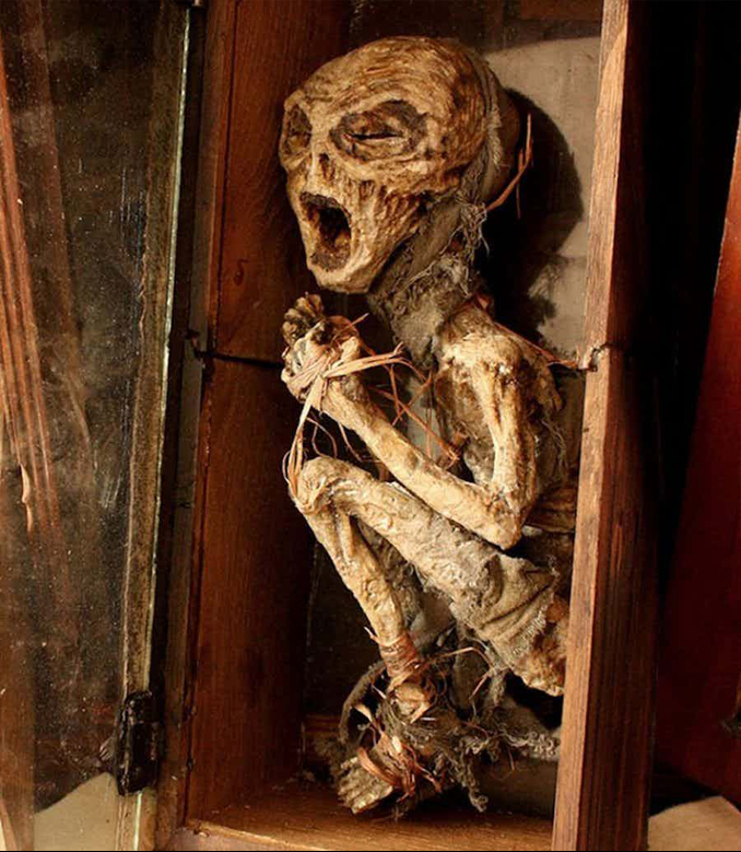 Body of an Alien Found in Thomas Theodore Merrylin's Abandoned Laboratory - 10 Creepiest Things Discovered in Abandoned Buildings