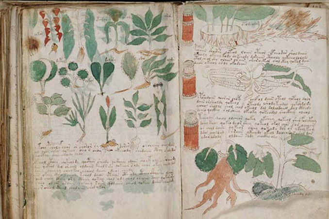 The Voynich Manuscripts are one of many mysterious events that people struggle to comprehend