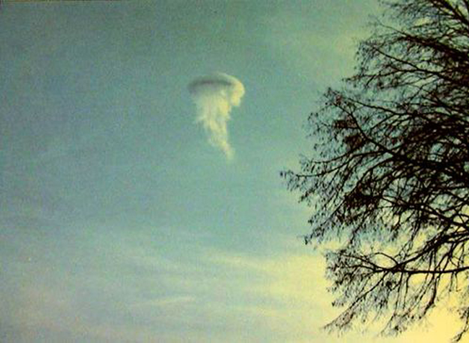 The atmospheric jellyfish floating in the sky, from the SCP Foundation
