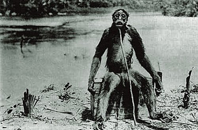 Weird things discovered in the Amazon jungle
