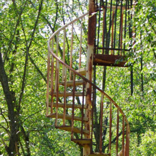 A spiral staircase in the woods