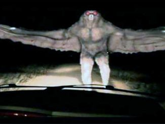 Mothman Sightings Leave Residents on Edge