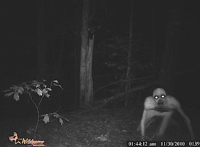 The Rake caught on trail camera in the woods
