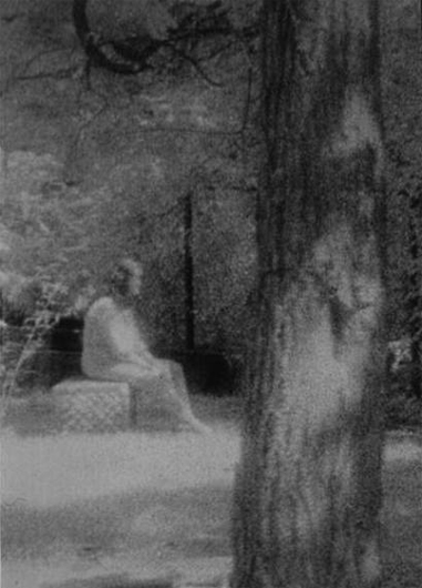 A photo of the Bachelor's Grove Cemetery Ghost. One of the most famous scary cemetery photos