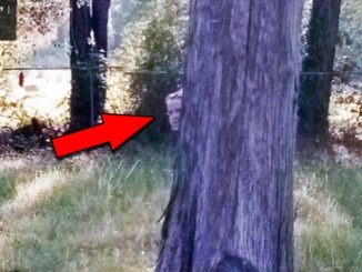 Creepy cemetery photos that will scare you