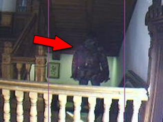 Paranormal webcams let you see ghosts live on stream.