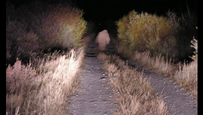 Utah Skinwalker sighting, it is one of many real cryptid encounters across the internet.