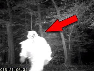 A series of eerie events show creepy clown caught on trail camera