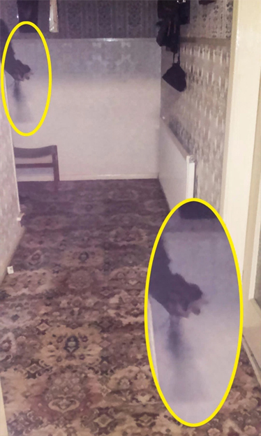 Photo in hallway of strange black mist reported to be the Black Monk of Ponteract. One of many paranormal photos on the internet.
