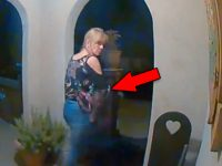 Burglars Caught on Camera Stealing the Weirdest Things