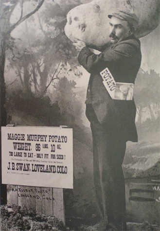 A black and white photo of a man carrying the infamous Maggie Murphy oversized fake potato.