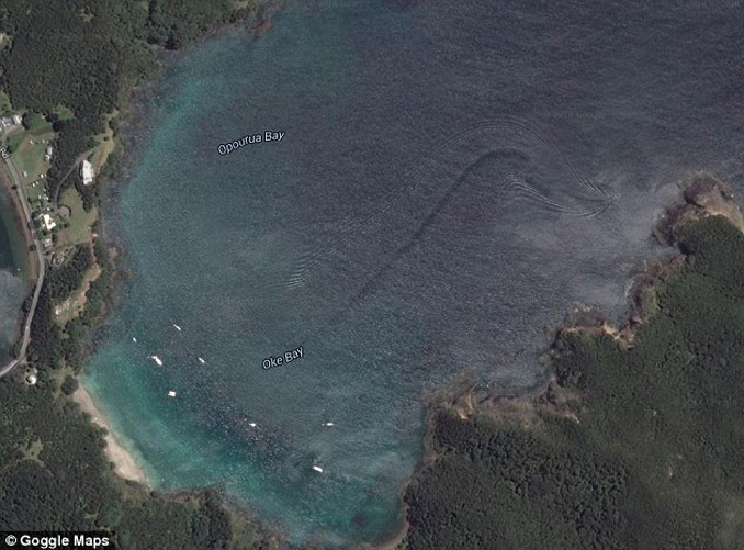 This unexplained photo seems to show a sea serpent on Google Maps.